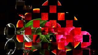 Download Lagu LA BİEN PAGA-CARMEN FLORES Mp3