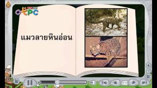 สื่อการเรียนการสอน สัตว์ป่าสงวน ป.3 วิทยาศาสตร์