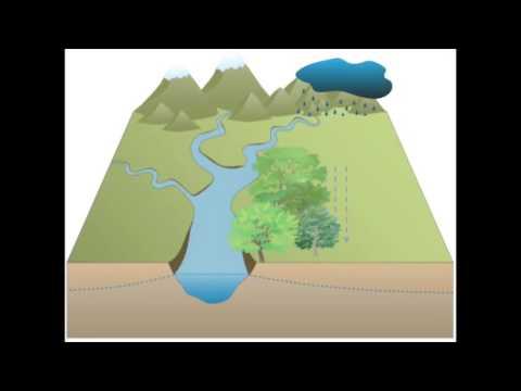 Urban Watershed Continuum
