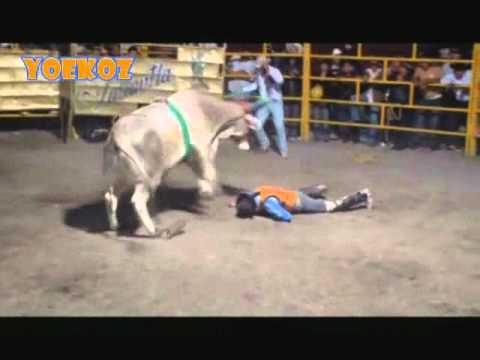CONVULSIONADO!! : Gallito de Zepayautla