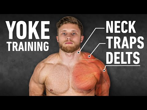 YOKED: The Ultimate Trap, Neck and Delt Workout (Science-Based)