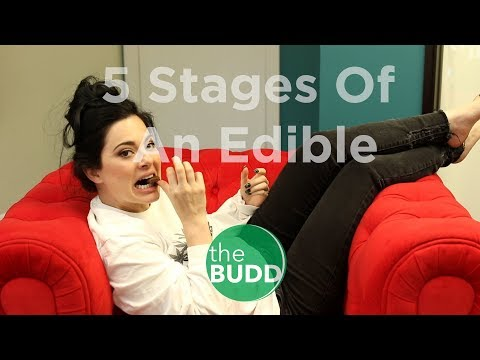 5 Stages of An Edible (видео)