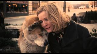 Nonton The Most Emotional Scene In Hachiko  A Dog S Story Film Subtitle Indonesia Streaming Movie Download
