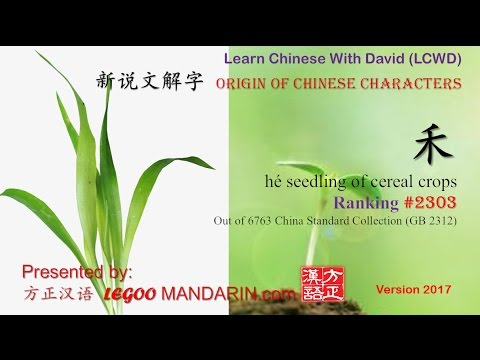 Origin of Chinese Characters - 2303 禾 hé seedling of cereal crops - Learn Chinese with Flash Cards