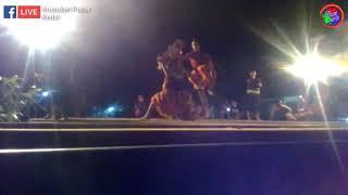 Singo Kumbang Dan Hanoman New Satriyo Mudo Live Krusukan Papar Kediri