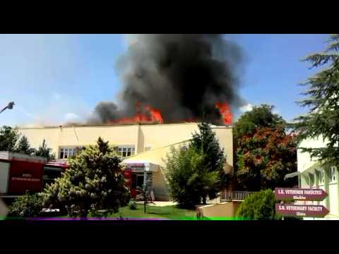 Selçuk Üniversitesinde Yangın