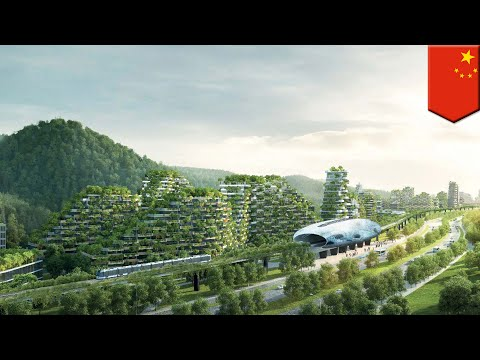 World's first Forest City under construction in China, runs on renewable energy - TomoNews