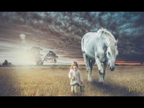 The Heavy Horses ❀ Pale Rider ☆HD☆