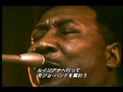 MUDDY WATERS 1971 Got My Mojo Working