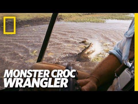 Croc v. Chopper | Monster Croc Wrangler
