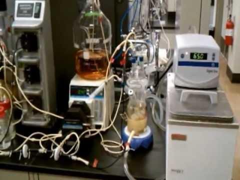 Biotechnology and Bioengineering: Biological n-butyrate to n-butanol conversion