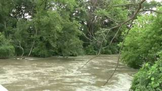 Westchester (IL) United States  city photo : Rising floodwaters above flood stage in Westchester Illinois summer 2010