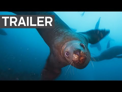 Blue Planet II Official Trailer 2 - BBC Earth (видео)