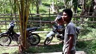 Video gara2 kayu sampai di bacok dngn parang MP3, 3GP, MP4, WEBM, AVI, FLV November 2017