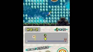 Nintendo DS Longplay [023] New Super Mario Bros