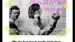 Download Lagu The Unicorns - Peach Moon (versions 1 + 2) Mp3