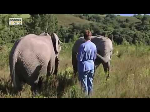 Südafrika: Die mit den Tieren leben (3/5) - Eine Elefantenliebe in Südafrika (Doku)