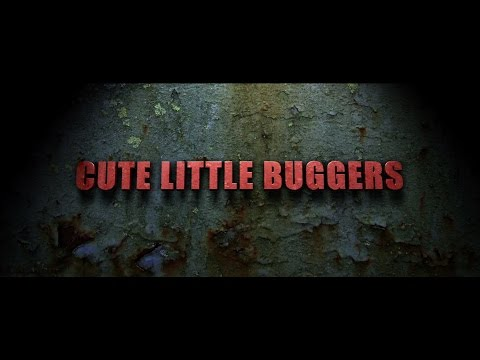 Cute Little Buggers Trailer 3 HD