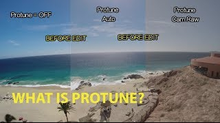 Video What is Protune? GoPro Tip #317 MP3, 3GP, MP4, WEBM, AVI, FLV September 2018