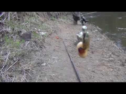 ловля хариуса в мутной воде весной на червя
