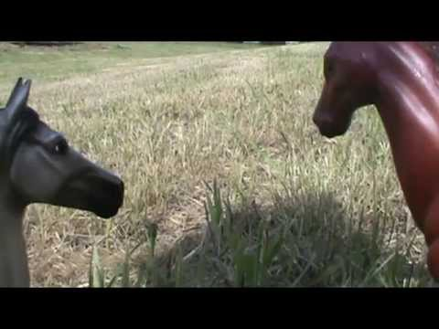 Foal Quest: ep 18. Loosing Friends, And Gaining Friends- Breyer Horse Movie