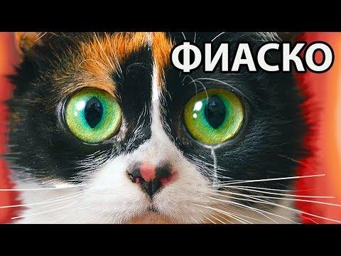 ВСЯ БОЛЬ В ОДНОМ ВИДЕО (видео)