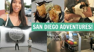 July 22nd and 23rd 2017In this vlog I take you along on all my adventures here in San Diego! I had so much fun hanging out with my friends Brendon, Oliver, Roy, Richard, Bronson and more! We started out just visiting friends and then the next day I went to the Hillcrest Farmer's Market here in San Diego and it was honestly the best farmer's market I had ever been to! There was such a great diversity of the produce, homemade foods, food booths and hand made goods! The atmosphere was very relaxed and the prices were all very fair compared to crazy LA prices! I then went bowling in Brendon's and Oliver's apartment complex which is like crazy cause I've never heard of that before!! That was fun and then we went to WonderSpaces which is a pop-up art museum and it was so cool because there were so many interactive exhibits and pieces that really made this museum fun and engaging! Lastly we went to The Taco Stand and brought the food back to Richard and Roy's and had a fun chill night together!Thank you all so much for watching and I hope you subscribe to be a part of the #infinityfam and I'll talk to you all in the next vlog!XOXOCindy♥ Watch my previous vlog - https://www.youtube.com/watch?v=antSZnWyCig♥ Subscribe to my main channel - https://www.youtube.com/user/infinitelycindyFOLLOW ME ON SOCIAL MEDIA♥ Instagram - http://instagram.com/infinitely_cindy♥ Infinity Family Instagram - http://instagram.com/cindysinfinities♥ Twitter - https://twitter.com/infinitelycindy♥ Snapchat - infinitelycindy♥ Fyuse App - infinitelycindy ♥ Soundcloud - https://soundcloud.com/infinitelycindy♥ Infinity Family Instagram - https://www.instagram.com/cindysinfinities/♥ PO BOX (Valid from August 2016-September 2017)Cindy Thai2355 Westwood Blvd #879Los Angeles, CA 90064♥ For business inquiries -- infinitelycindy(@)gmail.com♥ For business inquiries for my vlog channel -- infinitelyvloggin(@)gmail.com
