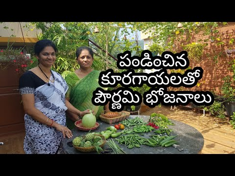 Harvesting vegetables for preparing dinner on the terrace./కార్తీక పౌర్ణమి భోజనాలు  #vegetablegarden