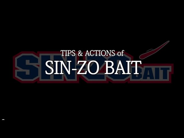 SIN-ZO BAIT the tip & action