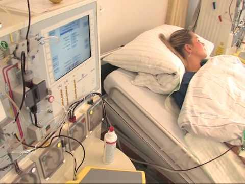 Kaulų čiulpų donorystė