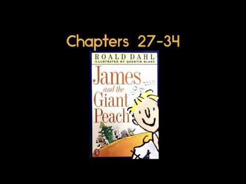 James and the Giant Peach Read Aloud by Roald Dahl Chapters 27-34