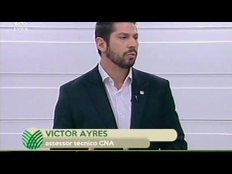 Assessor técnico da CNA Victor Ayres fala sobre suinocultura