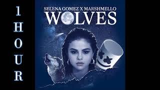 Video [HD] Selena Gomez ft. Marshmello - Wolves (1 Hour Version) MP3, 3GP, MP4, WEBM, AVI, FLV Januari 2018