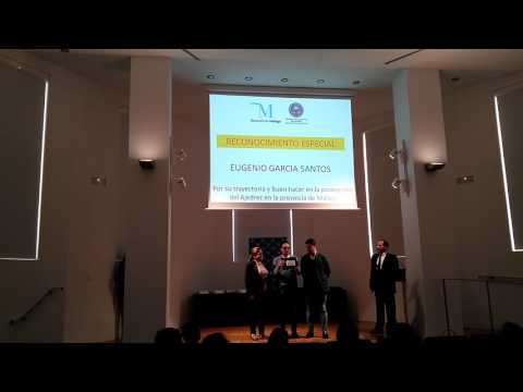 Diputación de Málaga galardona a los deportistas más destacados de Ajedrez