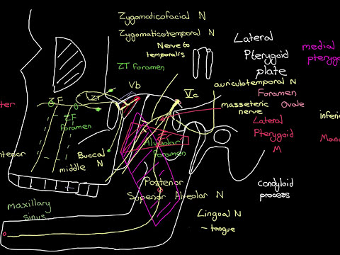 Headaches Part 6