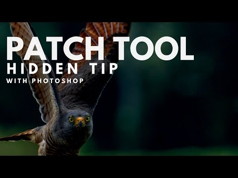 The Hidden Trick To Photoshop's Patch Tool