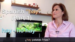 """Download FREE eBook → http://www.practiquemos.com/newsSoftware to practice (PC-Mac) → http://www.practiquemos.com/espanolFollow me:facebook → http://www.facebook.com/PRACTIQUEMOSGoogle+ → http://google.com/+PractiquemosEspanolTwitter → @practiquemosFREE SPANISH LESSONS - by Catalina Moreno EscobarLearn and practice Spanish with these free online Spanish lessons:""""haber"""" verbo impersonal para expresar """"existencia""""HAY + SUSTANTIVO  (Parte 1)""""Hay"""" o """"no hay"""" es la forma impersonal del verbo """"haber"""" en presente. Se usa con mucha frecuencia en español.  Ejemplos del uso de """"hay"""" con un sustantivo singular o plural:¿Qué hay en la nevera?En la nevera…hay jamón y hay queso.¿Qué más hay?Hay carne.Hay lechuga y tomates.Hay salchichas, pero no hay pan.Hay huevos.¿Qué hay de beber?Hay leche, Coca-cola, cerveza y agua.—————————————RECUERDA—————————————  Hay + sustantivo (singular o plural)✓ hay jamón✓ hay queso✓ hay tomates✓ hay huevosVocabulario:nevera, sándwich, preparar, no me apetece, comer, ensalada, tortilla, patatas fritas, galletas, frutas, pimientos, vino blanco."""