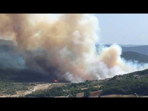 Incendio a Lagoni Rossi (Pomarance) 3 agosto 2017