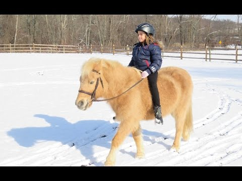 Bareback Horse Riding in the Snow!