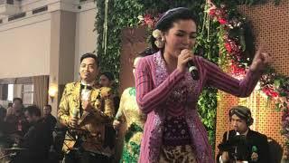 Video Vicky Shu 'Goyang' Resepsi Bobby-Kahiyang MP3, 3GP, MP4, WEBM, AVI, FLV Desember 2018