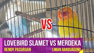 Video Lovebird Slamet VS Merdeka Di Walikota Cup Probolinggo MP3, 3GP, MP4, WEBM, AVI, FLV Juli 2018