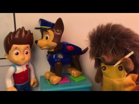 Paw Patrol Ryder Takes Chase to the Veterinary to get a Rabies Shot