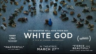 Watch White God (2015) Online Free Putlocker