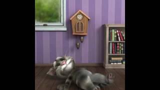 Konuşan kedi tom u konuşan ben rahat bırakmazsa