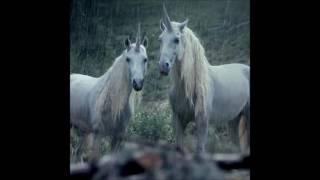 Video Lil Peep x Horse Head - Right Here MP3, 3GP, MP4, WEBM, AVI, FLV Januari 2019