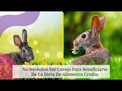 Dietas para adelgazar - No Necesitas Ser Conejo Para Beneficiarte De La Dieta De Alimentos Crudos
