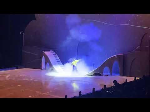 Disney On Ice: Mickey's Search Party in San Jose CA 2/19/20 Part Six: Aladdin & Genie