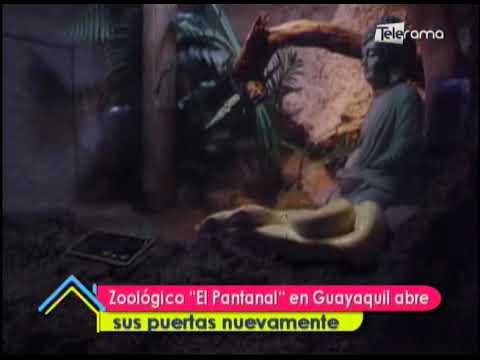 """Zoológico """"El Pantanal"""" en Guayaquil abre sus puertas nuevamente"""