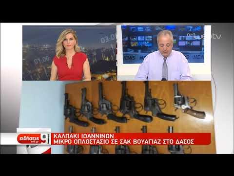 Καλπάκι Ιωαννίνων: Μικρό οπλοστάσιο σε σακ βουαγιάζ στο δάσος | 06/03/19 | ΕΡΤ