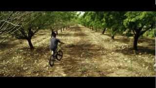 אברומי ויינברג – לנגן ולנגן (הקליפ הרשמי)